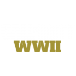 Tricou Call of Duty WW2 - LOGO